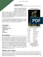 Arundinaria gigantea - Wikipedia