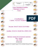 informe LACTANCIA MATERNA