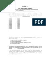 3. ACTA DE APROBACION ESTATUTOS Y ELECCION DIGNATARIOS