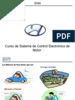 Teoria y Diagnostico de EMS (Manual)