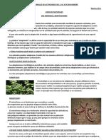 CUADERNILLO DE ACTIVIDADES DEL 3 AL 9 DE NOVIEMBRE.pdf