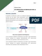 Biotensis de los aminoacidos no esenciales tema 10