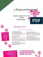 Pratique de Projet professionnel