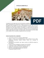 AVICOLA EL BUEN POLLO.docx