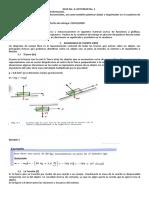 fisica 1 (1).pdf