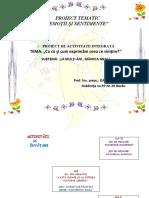63_proiect_de_activitate.doc