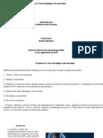 Evidencia 3.9 Plan estratégico de mercadeo KATHE.