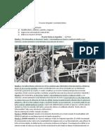 Proyecto integrador de economia parte 1