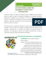 00 INTRODUCCIÓN RAZONAMIENTO CUANTITATIVO.pdf