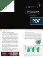 SBOE_Cap_09_Paulo Vinicius_p2.pdf