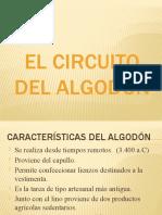 334611569-El-Circuito-Del-Algodon.pptx