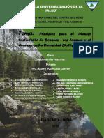 G1_MANEJO SUSTENTABLE Y DIVERSIDAD BIOLÓGICA_ORIGINAL