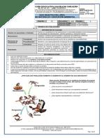 Guía No. 2 Segundo Periodo.pdf
