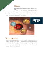 SESION 7-PDF