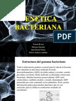 Genética Bacteriana.pdf