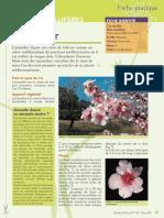 plantes-melliferes.pdf