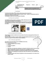 TECHNIQUE_Du_BRUSHING_version_site.pdf