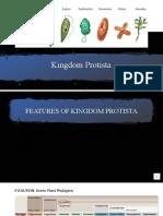 4.2. Kingdom Protista