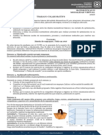 TC_MatematicasII_Optimizacion