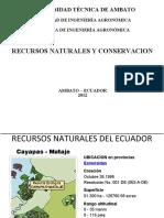 Presentacion Los RECURSOS NATURALES DEL ECUADOR.