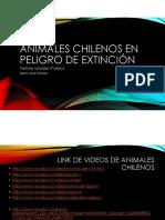 animales en peligro de extincion2.pdf