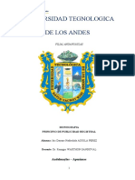 MONOGRAFÍA, PRINCIPIO DE PUBLICIDAD REGISTRAL.docx