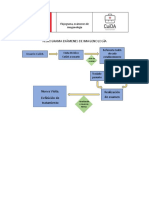 flujograma rx.pdf