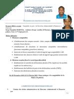 Curriculum Vitae Odilon