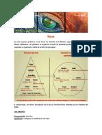 Crónicas del Girku - Las Razas.pdf