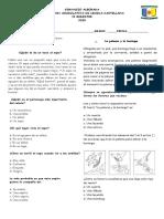 Evaluacion acumulativa de lengua castellana 2020
