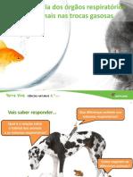 U5-importancia-orgaos-respiratorios-animais-final.pptx