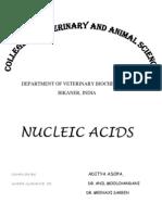 NUCLEIC ACIDS Aditya Asopa