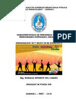 CARACTERISTICAS DE PERSONAS CON NN.EE
