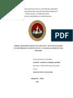 PERFIL NEUROPSICOLÓGICO-informe-terapias.pdf