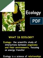 ecology GOOD.ppt