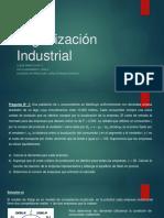 Organización Industrial_clase n° 9.pdf