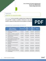 Ejercicio_Matriz_de_adquisiciones_caso_Haiti(Rpt.)p