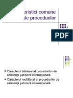 Caracteristici comune ale  procedurilor