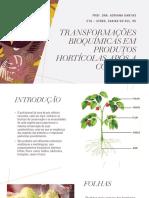 Aula 6.1 Transformações bioquímicas em produtos hortícolas após a colheita