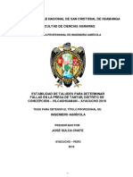 TESIS IAG99_Sul.pdf