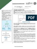 GRADO 9.pdf