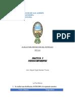 PRACTICA 3 PSEUDOCOMPONENTES