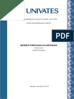 Relatório SÍNTESE E PURIFICAÇÃO DA ACETANILIDA - Fabrício Zeni e Wendell Dall Agnol.docx
