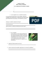 ficha las adaptaciones de los animales y plantas 4to grado (1)