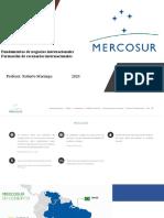 Mercosur 2020