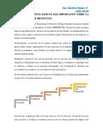 Ensayo- Elementos básicos de la Formulación de proyecto- Ana Ramos