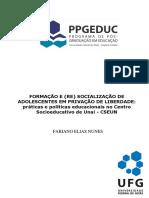 Dissertação - Fabiano Elias Nunes - 2018