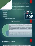 TRABAJO DE LENGUAJE DE PROGRAMACION VI.pptx