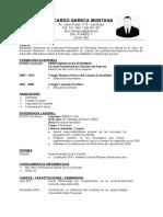 MODELO-CV-GENERAL.docx