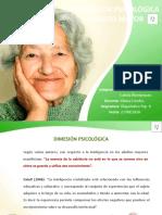 Dimensión Psicológica Adulto Mayor.pptx